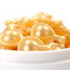 セラミドなどスフィンゴ脂質を食べて長寿になるか?